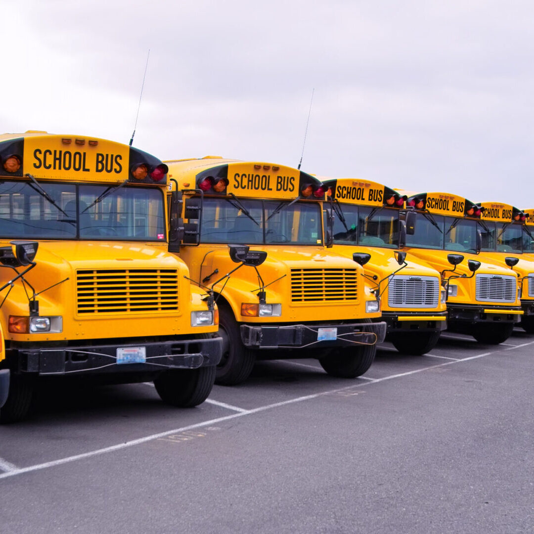 Seemingly endless row of yellow school buses.